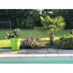 Pots de fleurs 200 litres -...